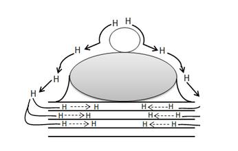 Hydrogen_Spillover_Diagram_3.png